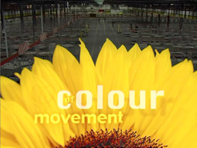 Movement of Colour